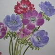 アネモネの花 (木綿のハンカチに描く 額装丁)