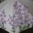 紫花菜の花(麻の白いパラソル)