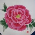 薔薇の花のふくさ(白寿ちりめん 着物裏地付き 絹100%)