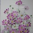 コスモスの花 (男もの紬地に描く 絹100%)