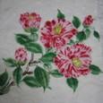 久留米つばき 吹上絞の花の絵