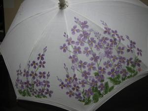 オオアラセイトウの花 (麻の白いパラソル)