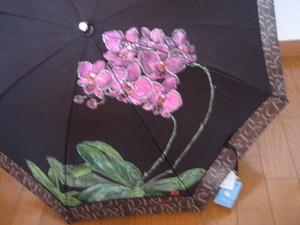 胡蝶蘭の花 (黒のパラソル)