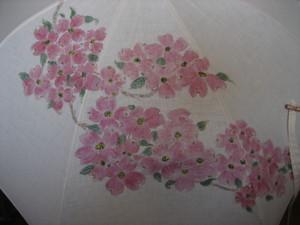 花水木の花(麻の白いパラソル)
