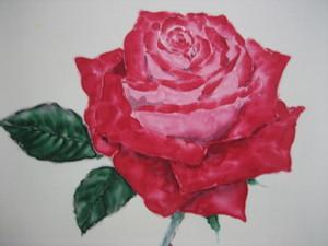 真っ赤な薔薇の花の絵