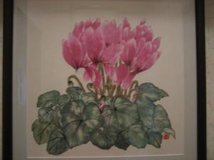 ピンクのシクラメンの花